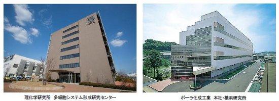 研究 所 は 理化学 と 器官誘導研究チーム 理化学研究所 生命機能科学研究センター(BDR)